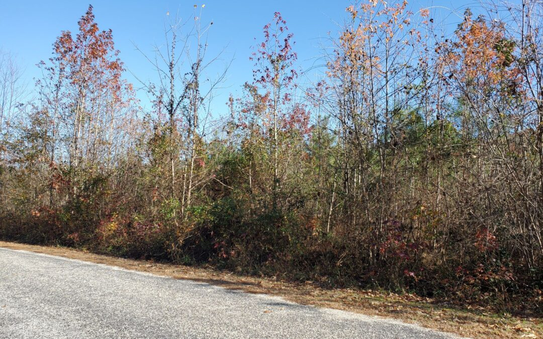 SOLD! Land For Sale! 9.93+/- acres just a short walk to the York River!
